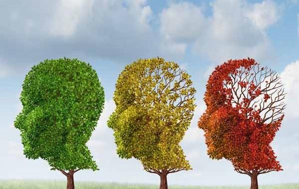 invecchiamento-cerebrale